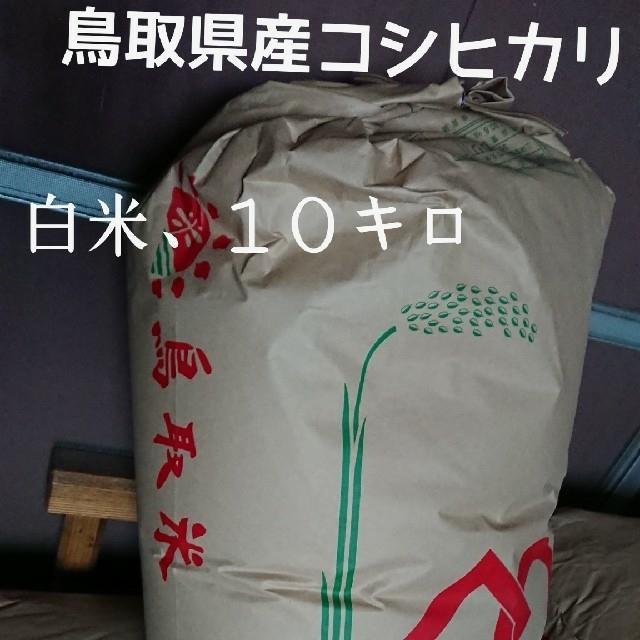 白米、10kg、30年鳥取県産コシヒカリ 食品/飲料/酒の食品(米/穀物)の商品写真