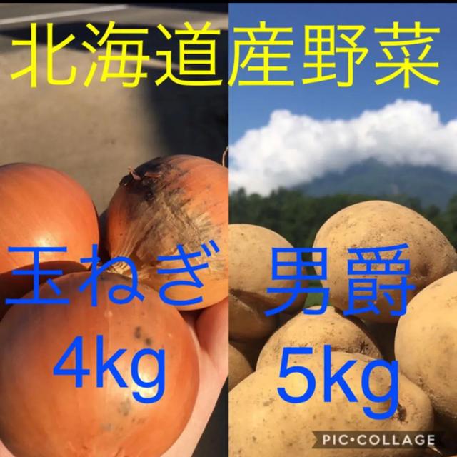 北海道産 玉ねぎ4kg じゃがいも5kg 食品/飲料/酒の食品(野菜)の商品写真