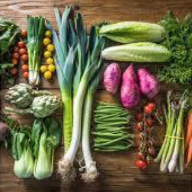 長崎無農薬野菜 12品春野菜 メガ盛り 長崎産 無農薬野菜 春の恵み採れたて野菜 食品/飲料/酒の食品(野菜)の商品写真