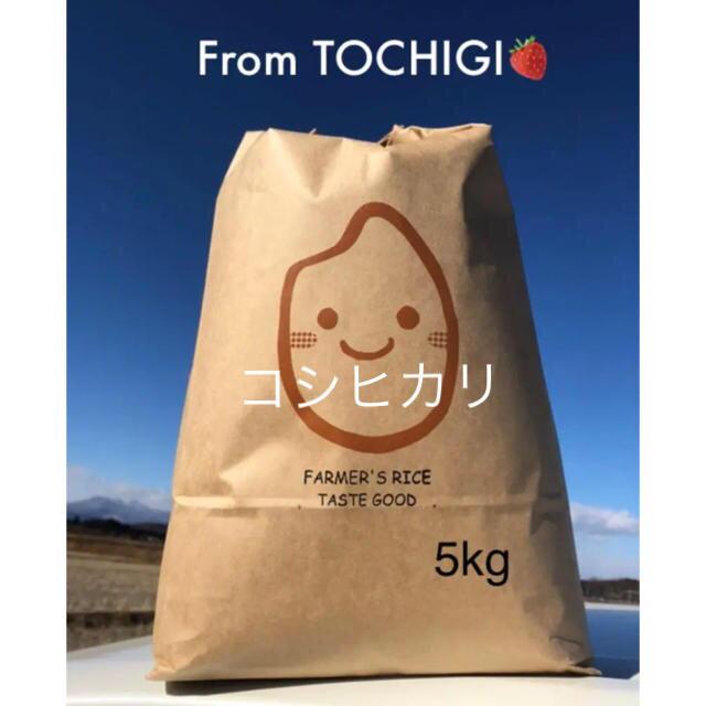 おすすめ☆農家自慢のお米☆精米5kg 食品/飲料/酒の食品(米/穀物)の商品写真