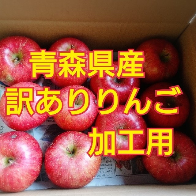 訳あり りんご 食品/飲料/酒の食品(フルーツ)の商品写真