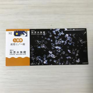 加茂水族館 ☆ クラゲドリーム館 前売り券 1枚(水族館)