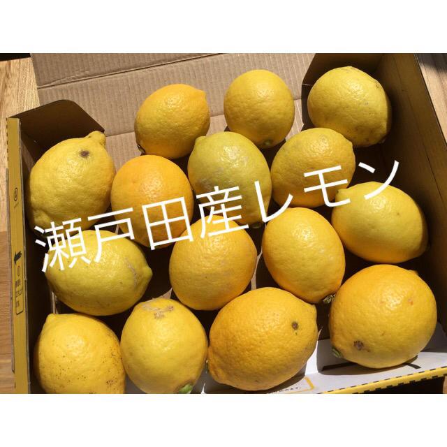 【産地直送】広島/瀬戸田産 レモン1.2kg 送料込み◎ 食品/飲料/酒の食品(フルーツ)の商品写真