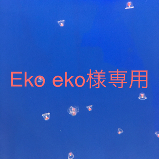 ケンコー(Kenko)のEko eko様専用です。(フィルター)