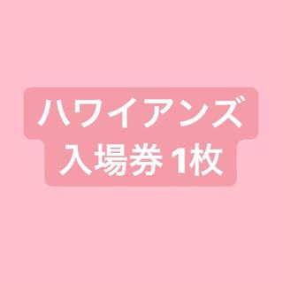 【即日発送】スパリゾート ハワイアンズ 入場券 1枚 (プール)