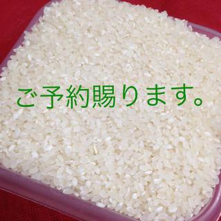H30年産 国産ひのひかり100% 精米済10㎏ 3580円(米/穀物)