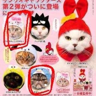 サンリオ(サンリオ)のねこのかぶりもの サンリオキャラクターズ2(猫)