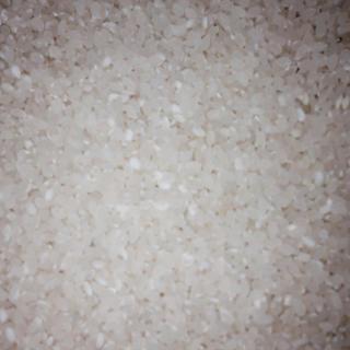 ブレンド精米  (うるち米)           10Kg(米/穀物)