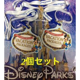 ディズニー(Disney)のパスケース2個セット(海外パークショップ袋大おまけ付き)(パスケース/IDカードホルダー)