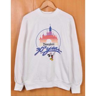 ディズニー(Disney)の30周年記念限定! USA Disney Land スウェット(トレーナー/スウェット)