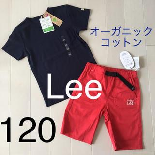 バディーリー(Buddy Lee)の新品[120]2点セット♡ミキハウスGAP ラルフローレンバーバリー好きな方にも(Tシャツ/カットソー)