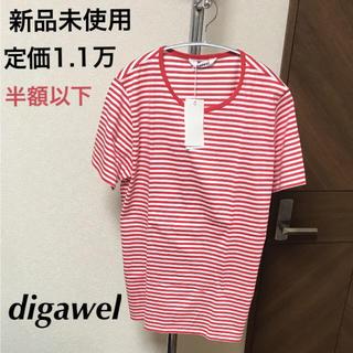 ディガウェル(DIGAWEL)の最終 新品 ディガウェル digawel ボーダー Tシャツ  コットン100%(Tシャツ/カットソー(半袖/袖なし))