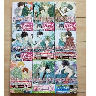 スーパーラヴァーズ(SUPER LOVERS)のSUPER  LOVERS 1~9刊 コミック本(BL)