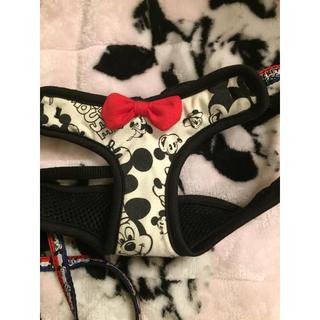 ディズニー(Disney)の犬用 リード&ハーネス(リード/首輪)