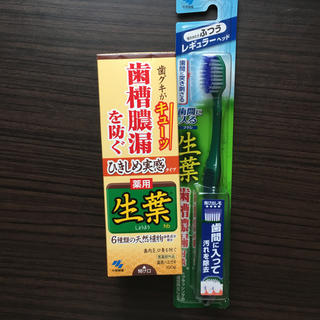 コバヤシセイヤク(小林製薬)のちょこ様 専用(歯ブラシ/歯みがき用品)