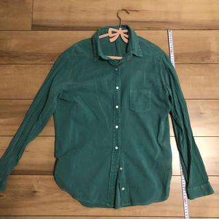 エムエスアール(MSR)のグリーンシャツ(シャツ/ブラウス(長袖/七分))