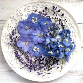 ドライフラワー 花材 ハーデンベルギア 八重咲きデルフィニウム(各種パーツ)