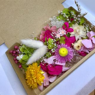 お花がいっぱいハーバリウム花材 ドライフラワー 花材セット(プリザーブドフラワー)
