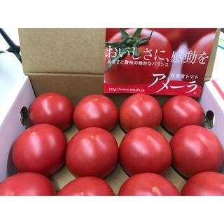 アメーラ フルーツトマト