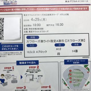 4/29 ヤクルト vs 広島 外野指定A(その他)