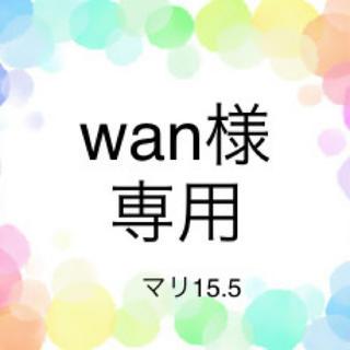 wan様専用 (スクールシューズ/上履き)