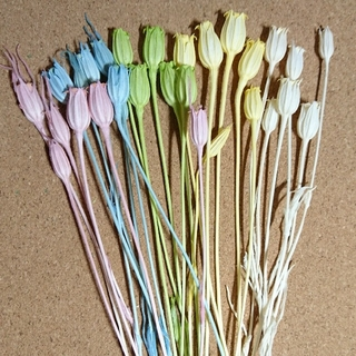 フローレンティナ5色花材(ドライフラワー)