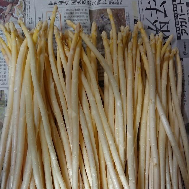 (限定増量!)佐賀県産極細ホワイトアスパラ1.8キロ(訳あり) 食品/飲料/酒の食品(野菜)の商品写真
