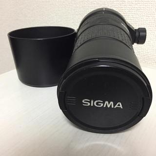 シグマ(SIGMA)のSIGMA 135-400 sony αマウント(レンズ(ズーム))