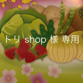 トリshop 様 専用 (お香/香炉)