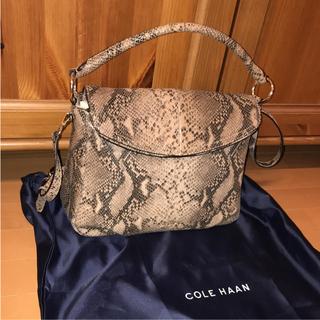 コールハーン(Cole Haan)のコールハーン 美品 革ヘビ柄パイソン ショルダーバッグ(ショルダーバッグ)