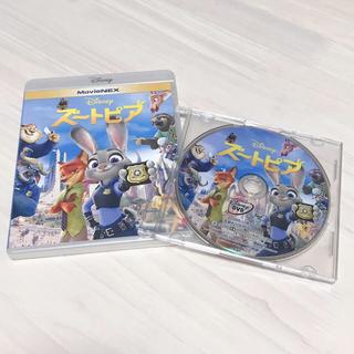 Disney - 未再生 ディズニー ♡ ズートピア DVD
