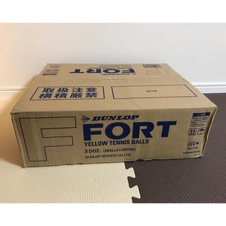 ダンロップ(DUNLOP)のリナリナ様専用 ダンロップ テニスボール FORT(フォート) 2箱(ボール)