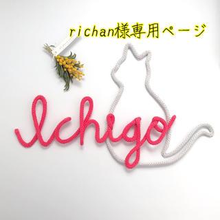 richan様専用ページ(オーダーメイド)