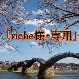 「riche様・専用」お試しセット(コミック用品)