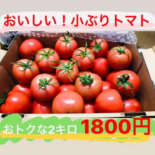 発送は金曜日☆採れたて!トマトたっぷり2キロ☆岐阜県産