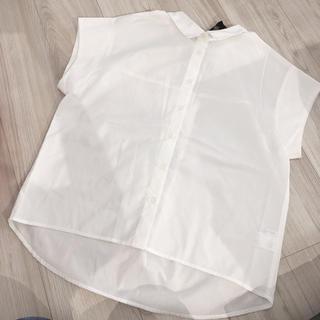 シマムラ(しまむら)のしまむら バックリボン半袖シャツ Mサイズ 新品  送料込(Tシャツ(半袖/袖なし))