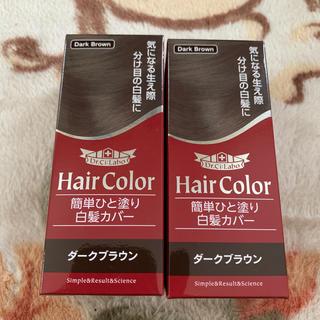 ドクターシーラボ(Dr.Ci Labo)のドクターシーラボ 簡単ひと塗り白髪カバー ダークブラウン(白髪染め)
