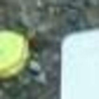 テニスボール ジャンク(ボール)