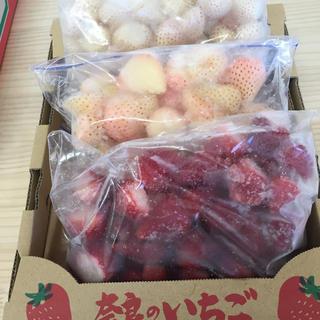 奈良県産 高級苺 3種食べ比べset 冷凍いちご(フルーツ)