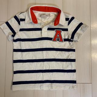 エイチアンドエイチ(H&H)のH&M ポロシャツ (Tシャツ/カットソー)