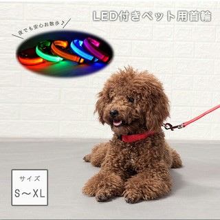 光る首輪 大型犬 中型犬 ベルトタイプ(リード/首輪)