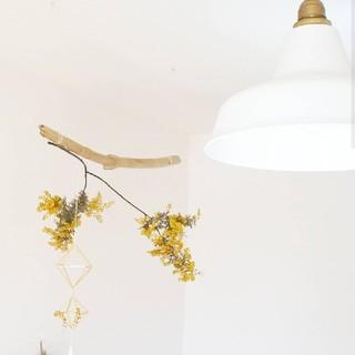 artworkstudio 照明器具(天井照明)