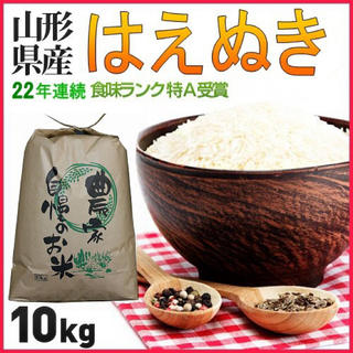 お米はやっぱり山形県  山形県産 はえぬき 10kg 精米・送料無料