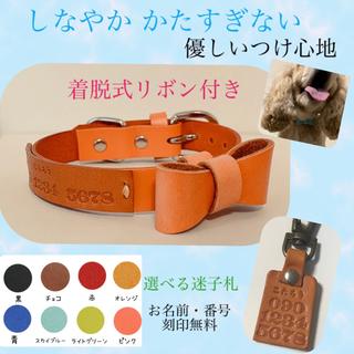 優しいつけ心地 迷子札付き 本革 犬 猫 首輪 レザー リボン 革(リード/首輪)