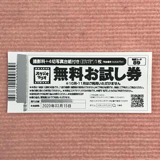 カメラのキタムラ  スタジオマリオ  無料お試し券 (アルバム)