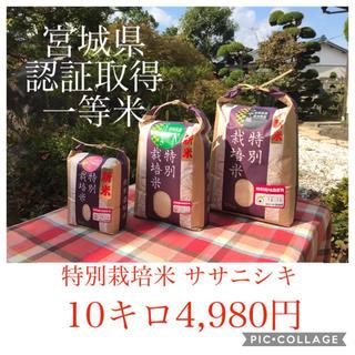 新米☆大粒☆特A取得☆宮城県産ササニシキ10キロ(米/穀物)