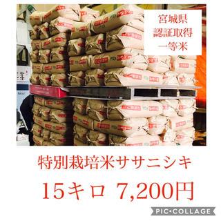 新米☆大粒☆特A取得☆宮城県産ササニシキ15キロ(米/穀物)