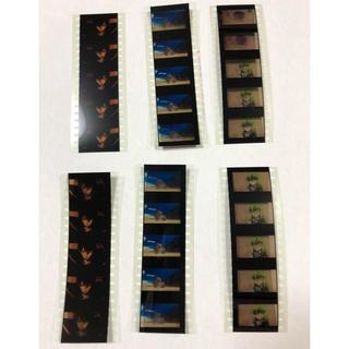 6枚セット コードギアス 復活のルルーシュ ルルーシュ C.C.  フィルム(その他)