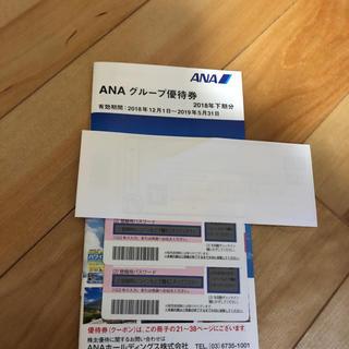 エーエヌエー(ゼンニッポンクウユ)(ANA(全日本空輸))のANA株主優待券2枚とグループ優待券(その他)
