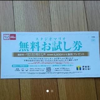 キタムラ(Kitamura)のスタジオマリオ 無料お試し券 (2019年9月末まで)(その他)